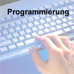 Business Software Ressing - Programmierung